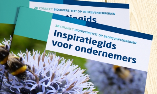 Brochure Biodiversiteit OBGB detail - ontwerp Comcorde+